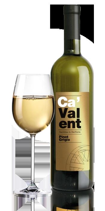 CAV-Pinot-Grigio